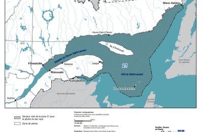 Ouverture de la pêche au bar rayé en Haute-Gaspésie cette semaine